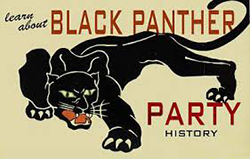 Black Panther Party Graphic